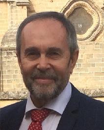 Dr. Luis Montoro González Catedrático de Seguridad Vial